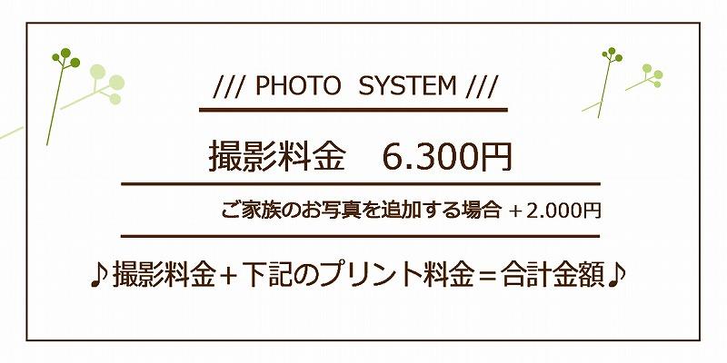 写真代は撮影料6.300円に下のプリント料を単純に足して下さいませ!!